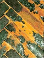 Bausachverständiger-München-Baugutachter-Bauabnahme-30-bild-schadstoff-ii_e24031d85d